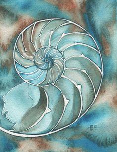 Conchiglia NAUTILUS 8,5 x 11 stampa del dipinto opera di acquerello in turchese vibrante e aqua a spirale di fibonacci dorati toni terra ver...