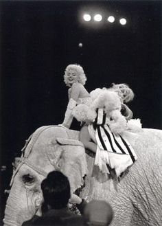 Marilyn Monroe at the Ringling Brothers Circus Charity Gala at Madison Square Gardens, March 1955.