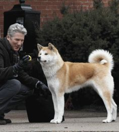 "Always by your side.  ""HACHIKO"" wonderful movie, with Richard Geere"
