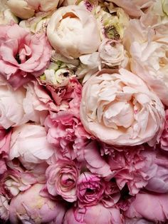 Love peonies - indoors and out