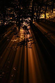 Leaking Light by ~imaraccoon on deviantART