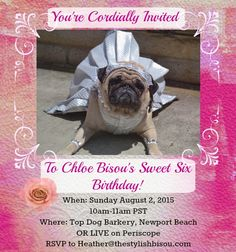 You're invited! Yes, all of you are invited! We're live broadcasting Chloe Bisou's Sweet Six Birthday party LIVE on Periscope on Aug 2nd, 2015 from 10am-11am PST! Details in this link!