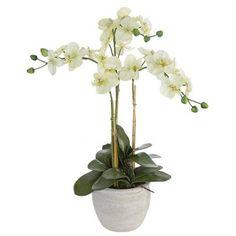 Plantas artificiales. Planta orquidea artificial crema 75 en lallimona.com