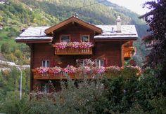 Switzerland-Flowers.jpg 500×347 pixels
