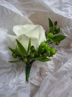 BH-rose,berry-myrtle.jpg (559×750)