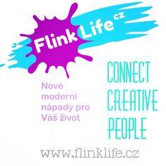 Flink life project