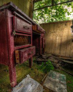 🍀 O͜͡R͜͡G͜͡A͜͡N͜͡I͜͡C͜͡ C͜͡A͜͡R͜͡P͜͡E͜͡T͜͡ ☘️ Abandoned desk overgrown floor derelict nature