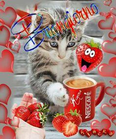 Nescafe, Mary, Frases, Bom Dia, Bonjour