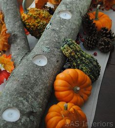 """Yule log centerpiece or Tea Light Set  Cut a 6-8"""" diameter birch branch into 3-4 inch chunks.  Drill 2"""" diam holes on """"top"""" of each section. Wick and then pour soy into holes of branch sections  Reassemble, wrap like a yule log    DIY Green Gift  Green, because you can use them as kindling, a firestarter, or tealight holder when the soy candles are gone."""
