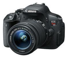 A new camera from Best Buy - Adventuresof8.com