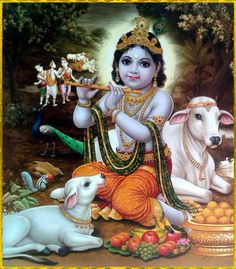 """SHRI KRISHNA GOVINDA ॐ   http://careforcows.org/  """"The glory of the Lord is always worth singing, for His glories enhance the glories of His devotees. One should therefore meditate upon the Supreme Personality of Godhead and upon His devotees. One..."""
