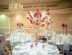 Queen's Landing Wedding Reception Flowers Curly Willow Orchids 2