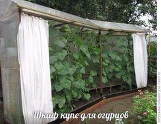 Summer House Garden, Home And Garden, Container Gardening, Gardening Tips, Greenhouse Plans, Cold Frame, Paradis, Urban Farming, Raised Garden Beds
