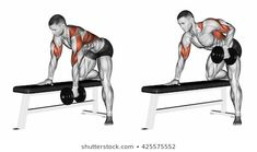 End dumbbell with one hand. End dumbbell with one hand. Exercising for bodybuilding. Target muscles are marked in red. Initial and final steps stock illustration Fitness Workouts, Ace Fitness, Weight Training Workouts, Gym Workout Tips, Dumbbell Workout, Body Fitness, Workout Women, Training Exercises, Kettlebell