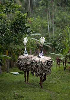 Tumbuan in Tolai tribe - Papua New Guinea by Eric Lafforgue