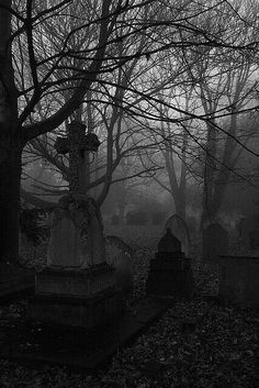 urban setting - that assuming this is a city cemetery and not a village setting I love shooting photos of cemeteries - this photo appealed to me because of the light and dark. Wish there was a credit for the photographer here - ? Cemetery Headstones, Old Cemeteries, Cemetery Art, Graveyards, Gothic Aesthetic, Spooky Places, Dark Photography, Dark Places, Macabre