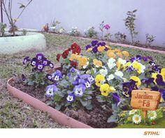 Este canteiro repleto de amores-perfeitos de todas as cores da nossa fã Adriana Leal é simplesmente maravilhoso!