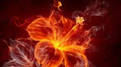 fire wallpaper hd - Google Search