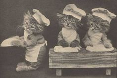 1905 - Photo by Harry Whittier Frees. So weirdly cute.