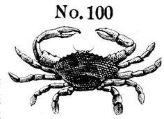 Crab No. 100