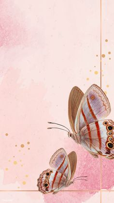 Gold frame with pink Butterfly Background, Flower Background Wallpaper, Butterfly Frame, Butterfly Pattern, Pink Butterfly, Flower Backgrounds, Butterflies, Butterfly Wallpaper Iphone, Disney Phone Wallpaper