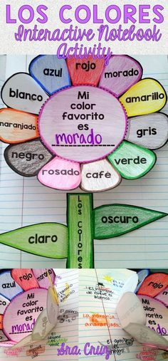 Spanish Interactive Notebook Activity: Los Colores 50% OFF for 24 Hours