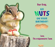 a birthday card from the craigconnects team