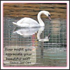 How might you better appreciate your beautiful self? www.radicalself-care.ca Self Care, Appreciation, Wellness, Beautiful, Bald Hair