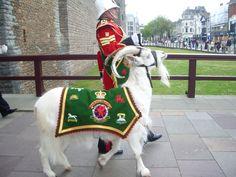 Royal Welsh Regiment's regimental goat