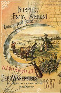 Burpee's Vintage Seed Catalog