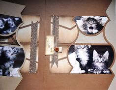 New York, Frame, Kitty, Album, Projects, Paper, Kitchens, Picture Frame, Little Kitty