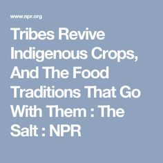 Tribes Revive Indigenous Crops, And The Food Traditions That Go With Them : The Salt : NPR