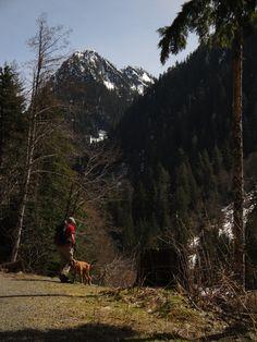 Monte Cristo trail, Washington, USA