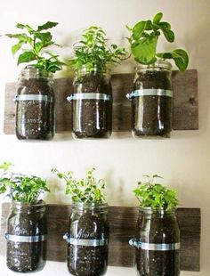 Elegant Reclaimed Wood Mason Jar Wall Hanging Planter