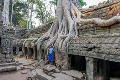 Ta Phrom in Angkor Wat Complex, Siem Reap Cambodia. Unbelievable!