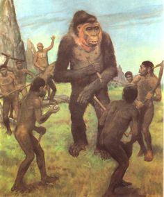 Gigantopithecus | Gigantopithecus