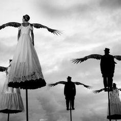 wanna fly by cmrcan #takeflight #winged #wannafly #stormyskies #wingedcreatures #photomanipulation #velvit