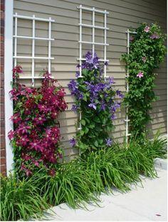 11 Inspirational Flower Garden Ideas for Backyard Simple But Beautiful – Diy Deco … - Diy Garden Projects Diy Garden, Garden Trellis, Garden Projects, Clematis Trellis, Diy Trellis, Spring Garden, Flower Trellis, Gravel Garden, Pea Gravel