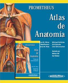 Prometheus. Atlas de Anatomía + Fichas de autoevaluación