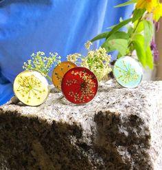 Spring rings. Norwegian flowers.