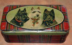 "Vintage ""Three Terriers"" toffee   tin"