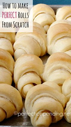 How to make the perfect rolls from scratch! An amazing recipe that will become your go-to recipe for family gatherings.