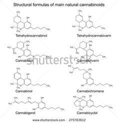 Formulas of natural cannabinoids: tetrahydrocannabinol, cannabidiol, cannabinol, cannabigerol, tetrahydrocannabivarin, cannabidivarin, cannabichromene, cannabicyclol, 2d illustration, raster