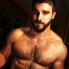First stop for anyone who loves to look at hot men. 18 years old and you should at least be too. Hot Men, Hot Guys, Sexy Guys, Sexy Bart, Hommes Sexy, Bear Men, Hairy Chest, Guy Pictures, Hair And Beard Styles