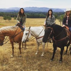 Did you hear the good news? Heartland will be back for another amazing season! Heartland Tv Show, Healing Heart, Amber Marshall, Best Shows Ever, Best Tv, Good News, Favorite Tv Shows, Film, Good Things