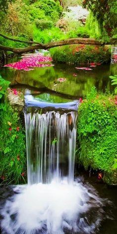 Beautiful and Serene