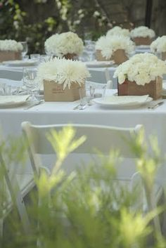 white flowers in boxes