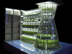 Vertical farming, also known as urban agriculture, gives hope for feeding our ever-growing population. Get ideas for starting your vertical farm. Agriculture Durable, Urban Agriculture, Urban Farming, Farming Farming, Architecture Design, Green Architecture, Sustainable Architecture, Permaculture, Future Farms