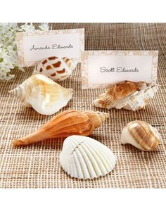 Shells By The Sea Shell Place Card Holder Wedding Favor
