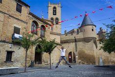 Castillo Palacio Real de Olite, #Navarra